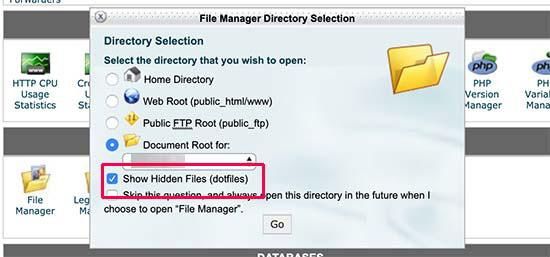 نمایش فایل های پنهان در cPanel